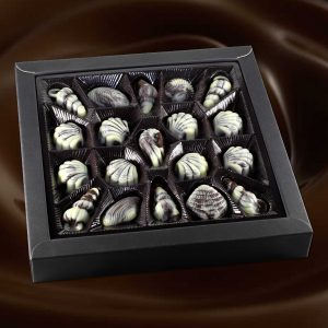 Seashell-Chocolate-002