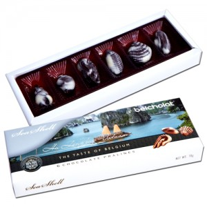 Chocolate Seashell 70g